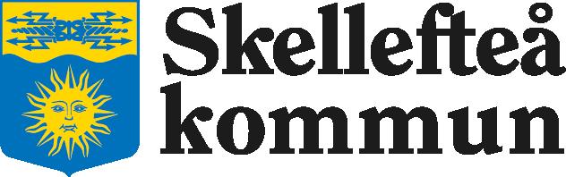 Skellefteå kommun RFI förmånsportal